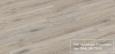 Дуб Белённый Титан R 1214