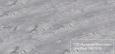 Дуб Серый RV 808